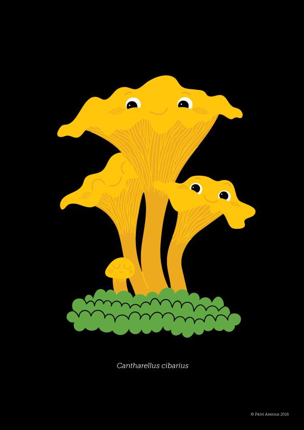 Kantarelli, Berry & Mushroom posters, 2016