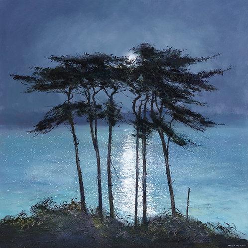 CV097 Moonlit Pines