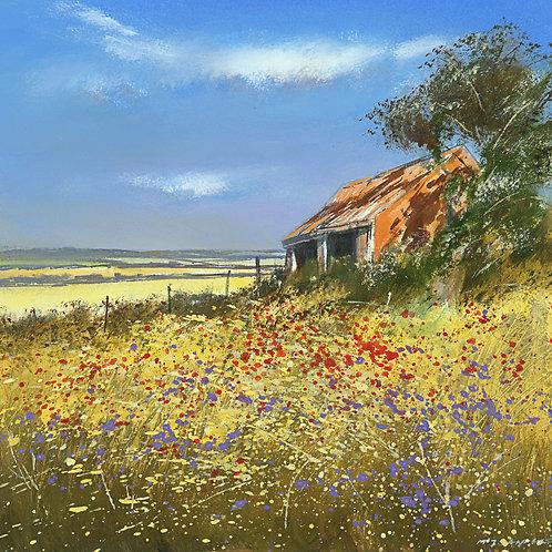 MS042 Barn in Summer