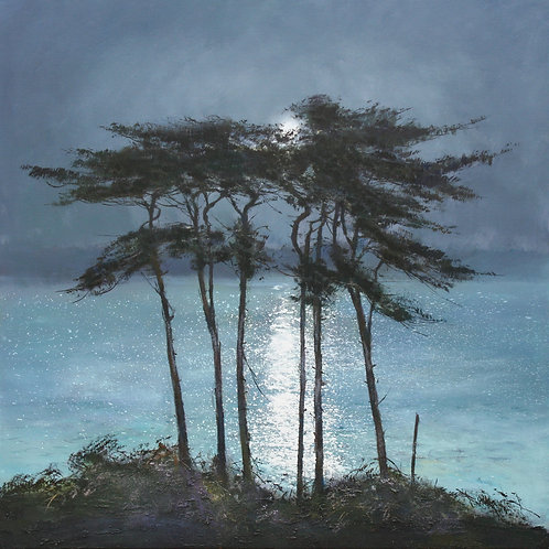 CC004 Moonlit Pines