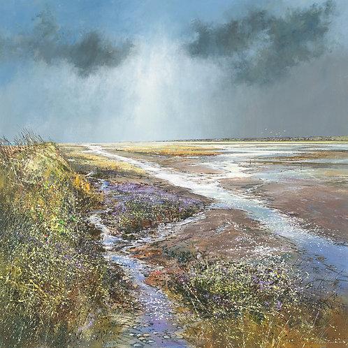 CV076 Titchwell Marsh