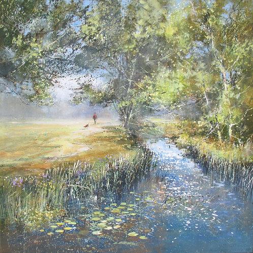 MS114 Lacock River