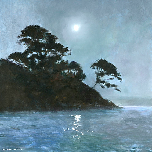 MS060 Moonlight, Helford River