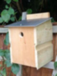 blue Tit nest box.jpg