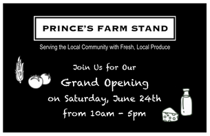 Grand Opening Event on Saturday, June 24th from 10am - 5pm