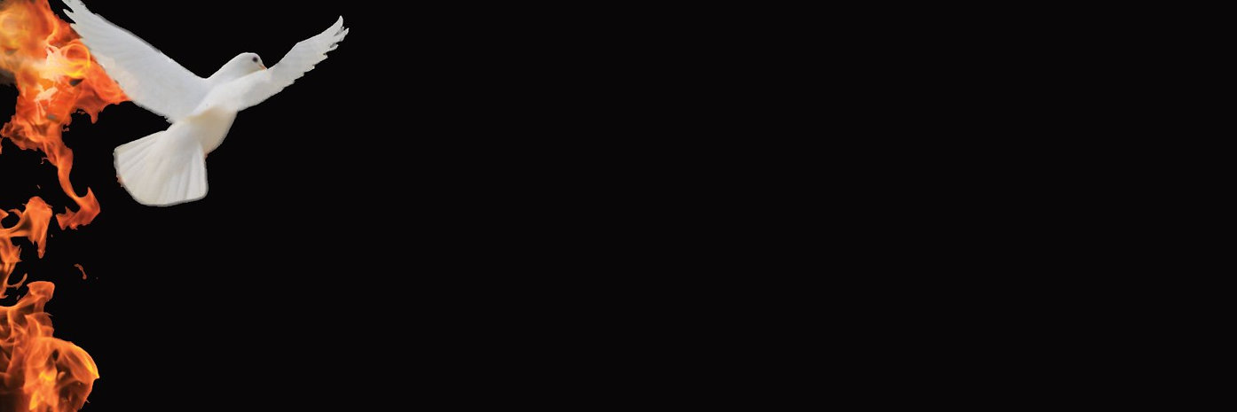 Flame-Dove-Banner.jpg
