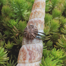 Sea Urchin Stacker Set