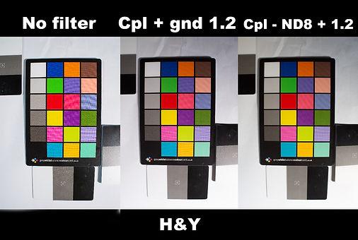 H&Y.jpg