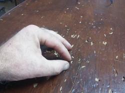 Danni su legno