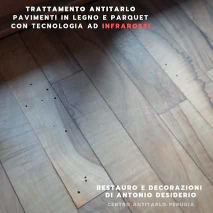 Danni da tarli pavimento in legno - parquet