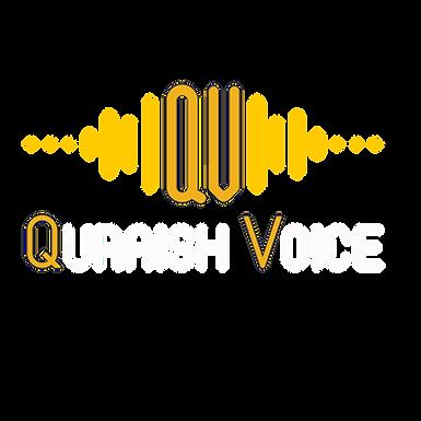 الدليل المختصر للمايكات وملحقاتها للمعلق الصوتي