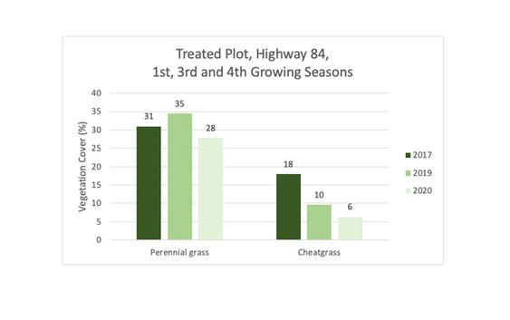 Vegetation Monitoring Results (June 2020):