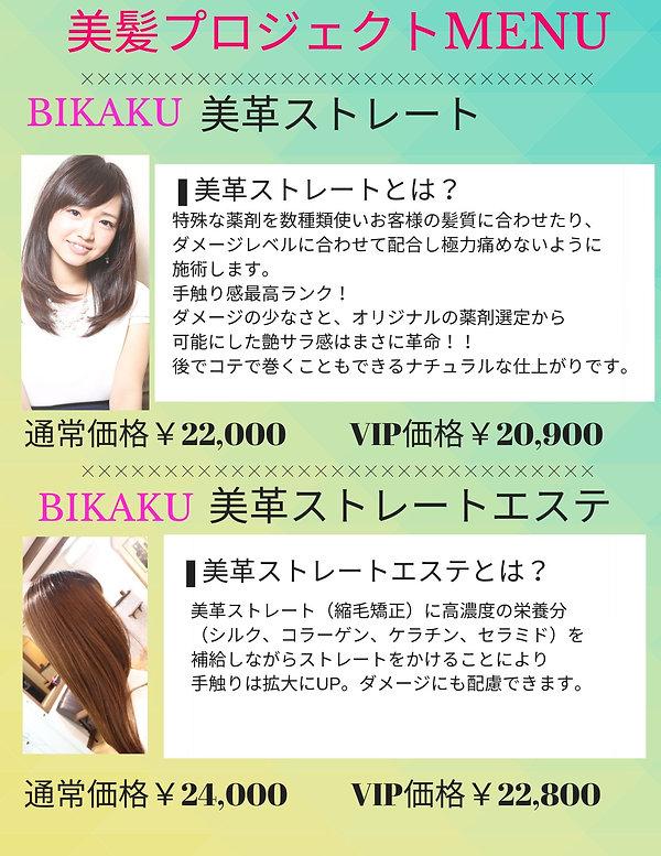 新ストレートメニューのコピー (1).jpg