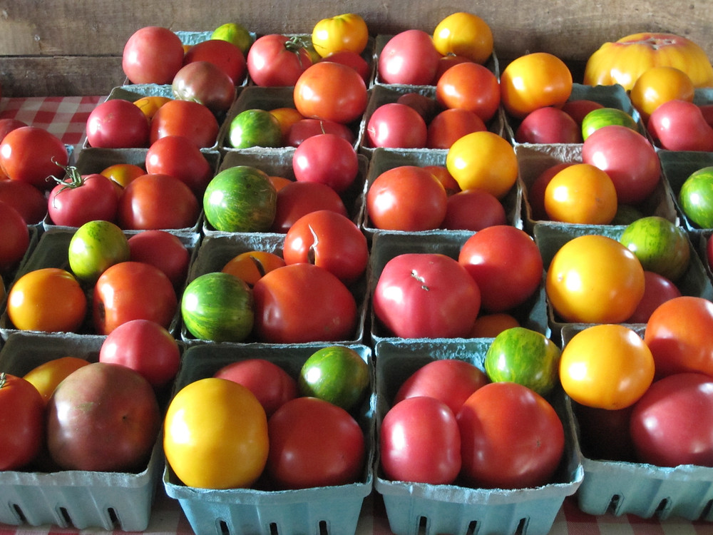 boxed assorted tomatoes