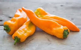 Escamillo sweet pepper