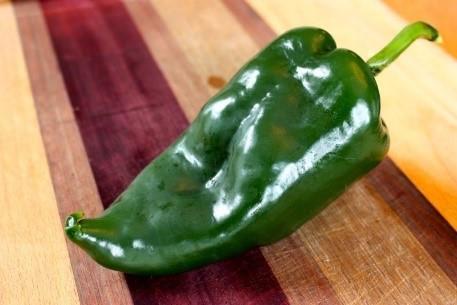 Poblano hot pepper