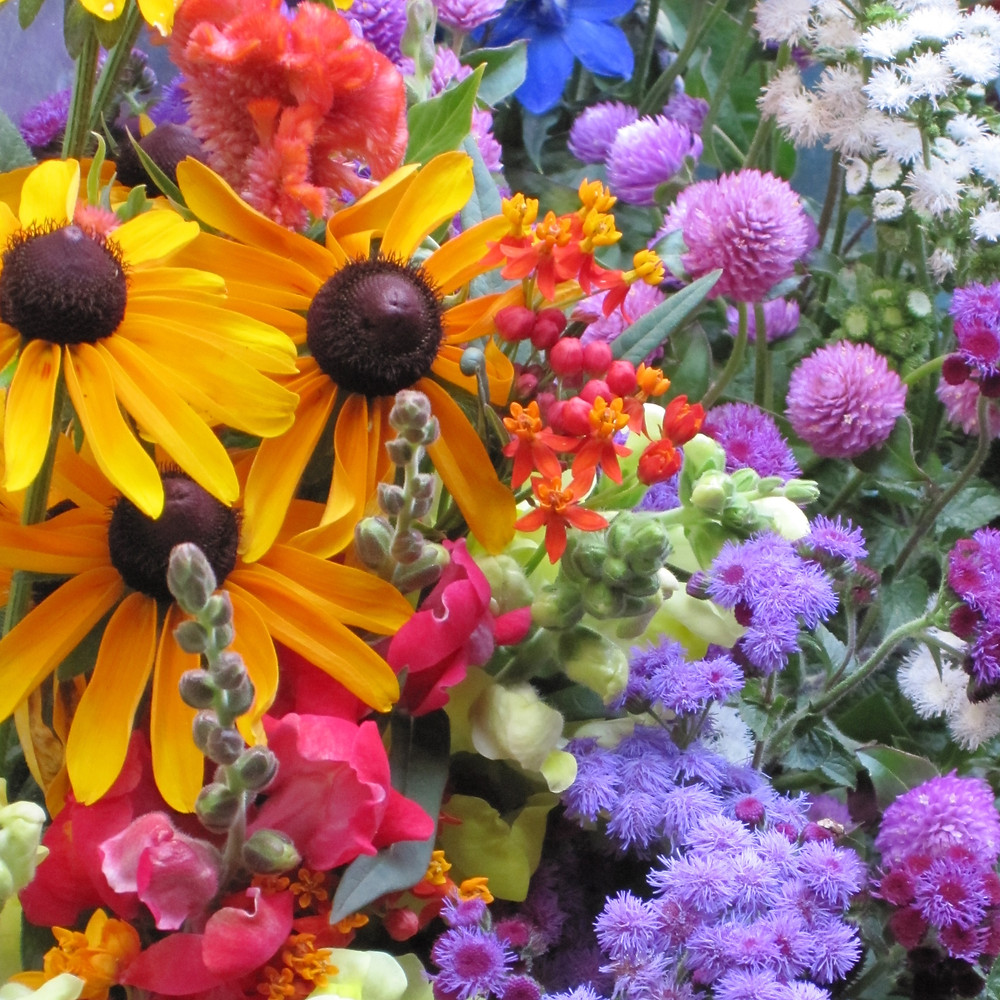 snapdragon, rudbeckia, ageratum and strawflower bouquet