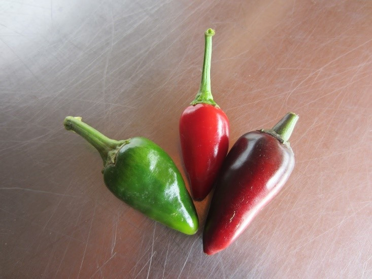 Jaluv an Attitude and Czech Black peppers