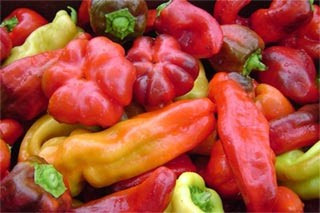 assorted sweet red peppers