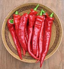 jimmy nardello-sweet pepper