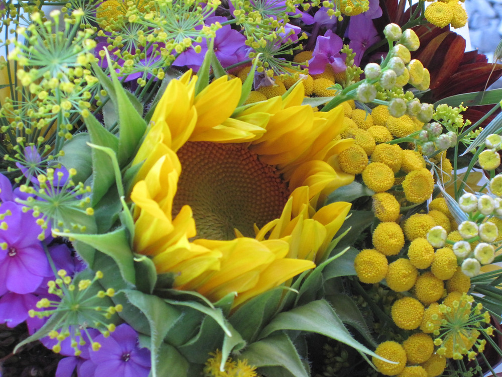 sunflower, tansy and phlox bouquet