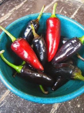 czech black hot peppers