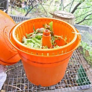 industrial salad spinner