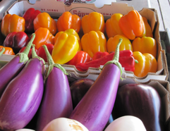eggplants and bell peppers