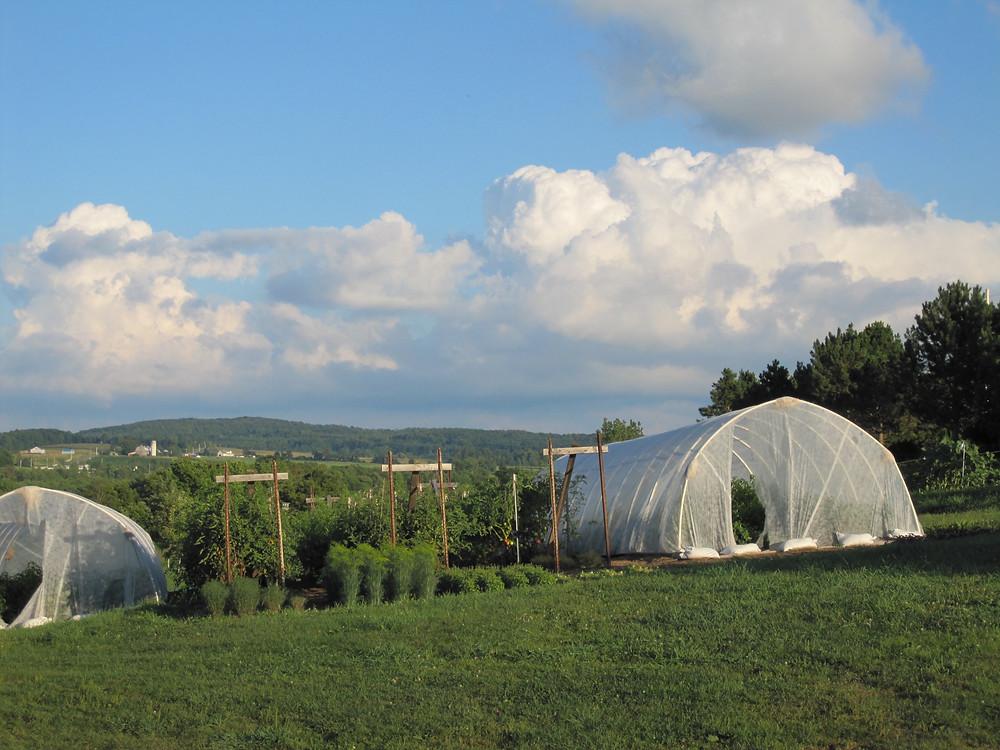 hoop garden houses