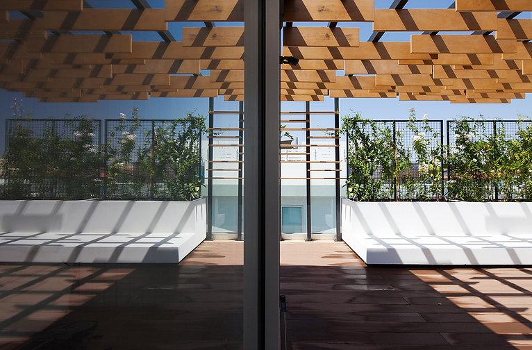 captivating architetural photography of roof garden pergola