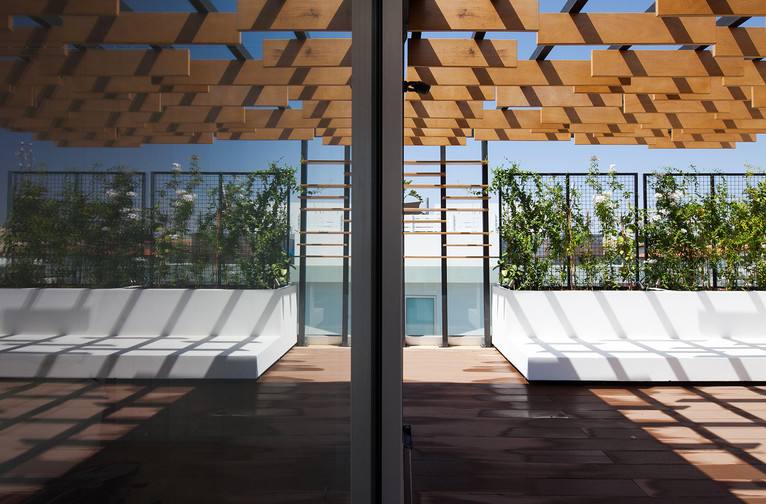 captivating architetural photography of roof garden pergola