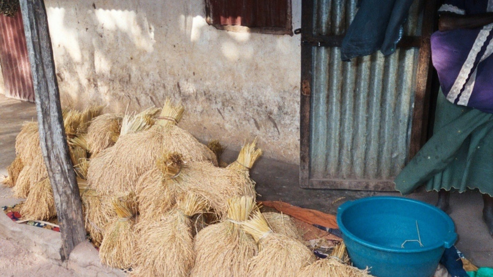 Rice bundles, West Kiang (2011).  Photo by R. Bernstein