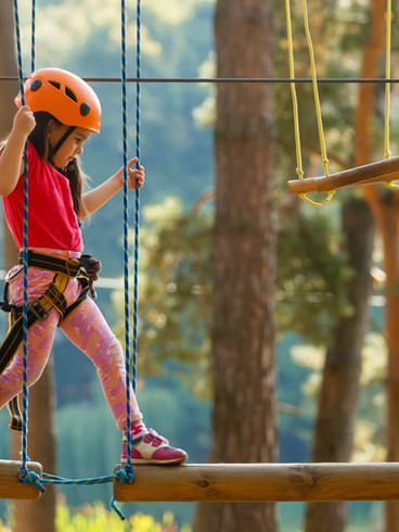 Aerial Challenge Course