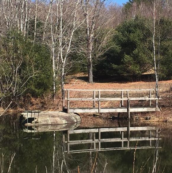 Pucky Pond