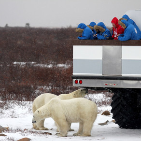 2015 Fall Arctic trip