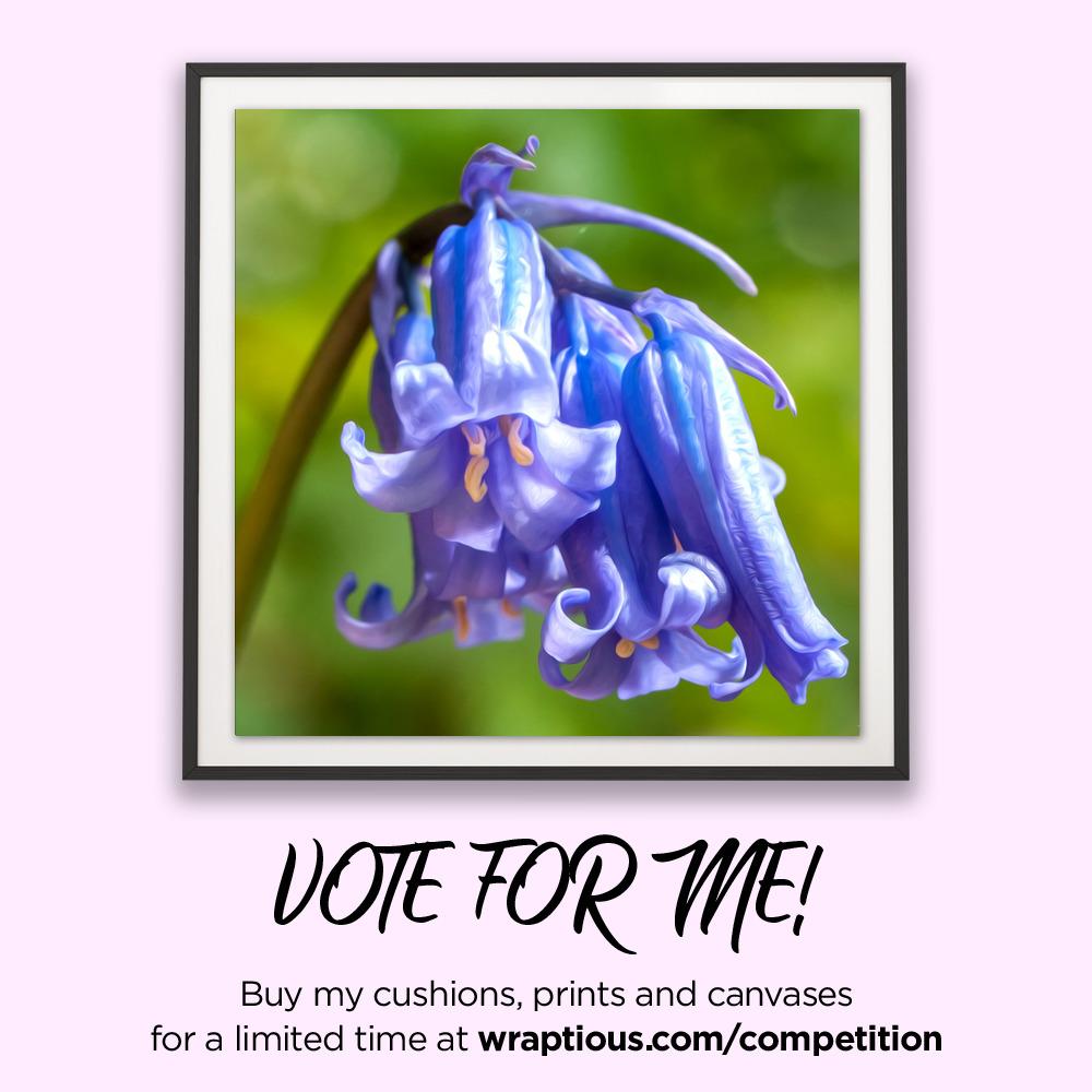 A_VoteForMe_Photo'Oil' Blue Bell_ArtPrin