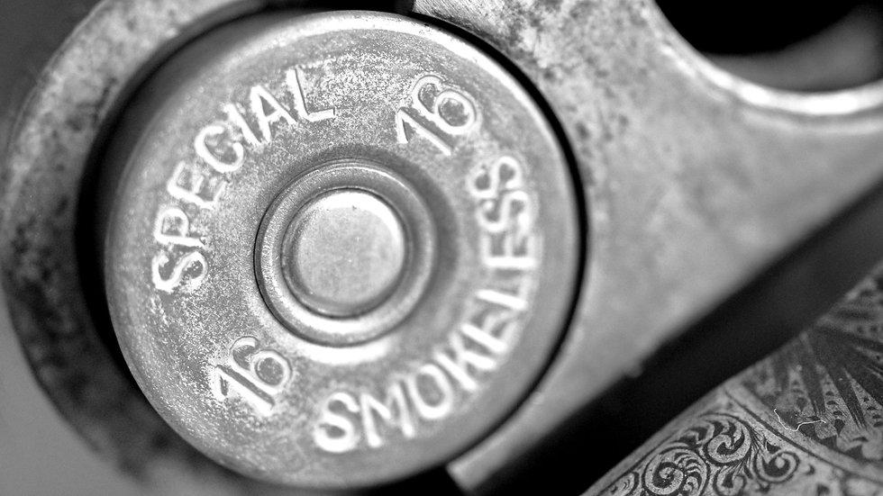 Smokeless Cartridge