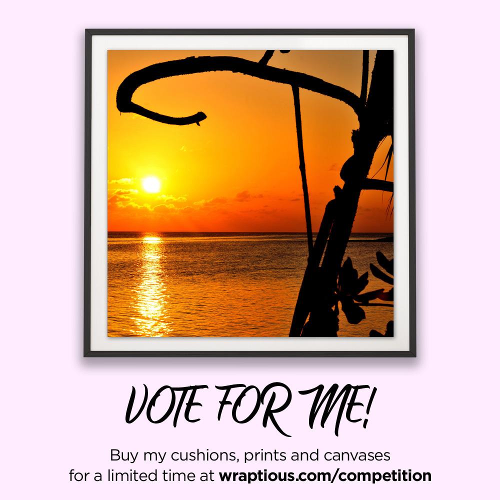 A_VoteForMe_Vilamendhoo Sunrise_ArtPrint
