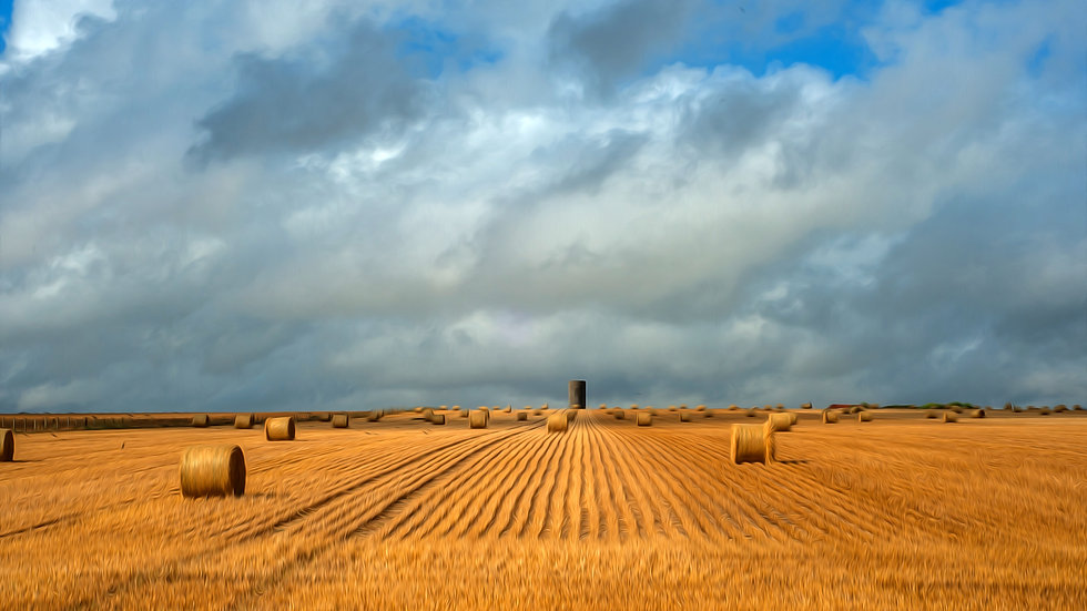 The Harvest - Near Stone Henge