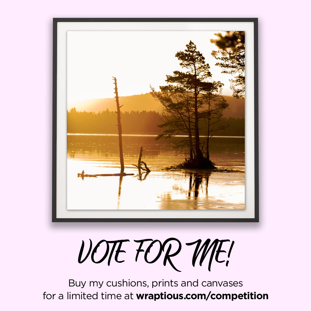 A_VoteForMe_Avienmore Sunrise_ArtPrint