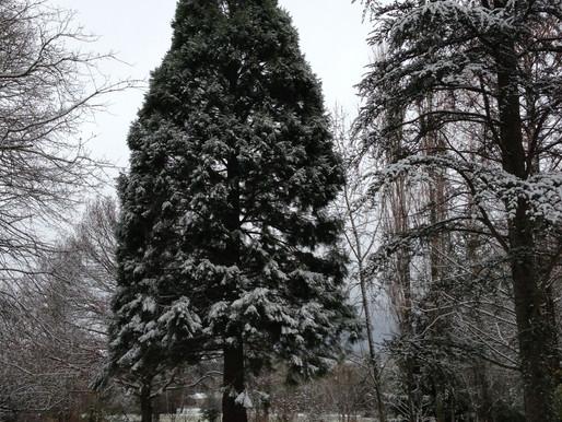 La Petite Forge en hiver a aussi son charme