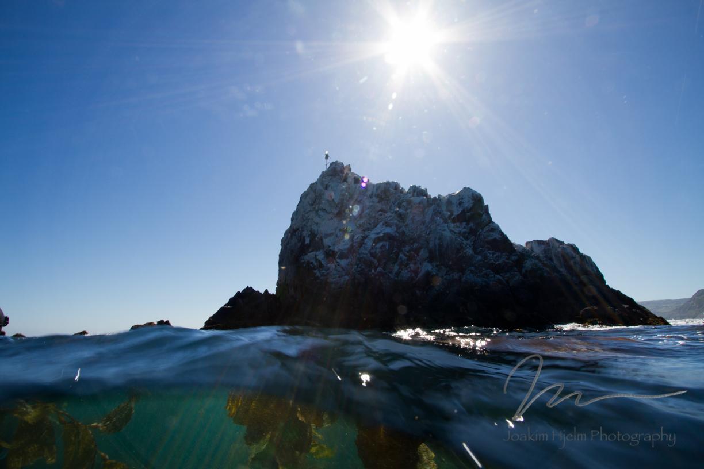 Shiprock and Kelp