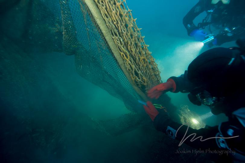 Infidel Port Nets Closeup