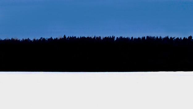 Eesti Vabariigi aastapäev