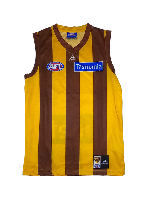 Hawthorn Hawks 2013 Home Guernsey (Medium)