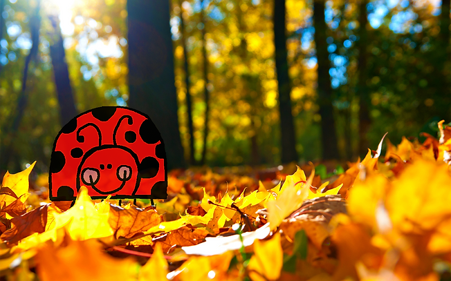 Ladybird in leafs.png