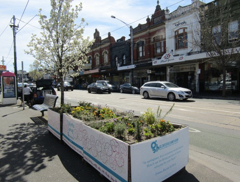 Fixed Planter Boxes: Glenferrie Road