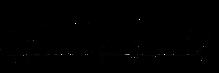 2xu-logo.jpg.png