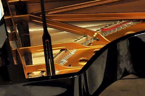 Lezione on line di pianoforte, ritmo e lettura musicale con il Maestro Raimo