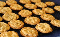 Almond_chocolate_chip_cookies,_June_2009